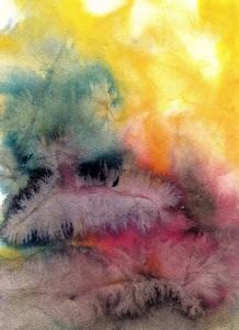 Fargeglade fjør-kopi (2)